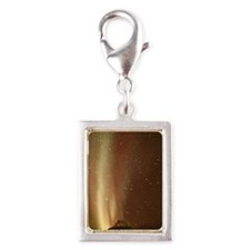 Satellite-tracking antenna Silver Portrait Charm