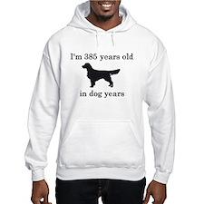 55 birthday dog years golden retriever Hoodie