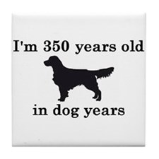 50 birthday dog years golden retriever 2 Tile Coas