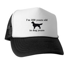 50 birthday dog years golden retriever 2 Hat