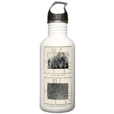 Fingerprint evidence,  Water Bottle