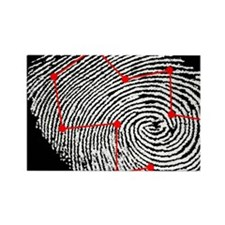 Fingerprint scanning Rectangle Magnet
