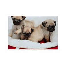 Puppies Rectangle Magnet