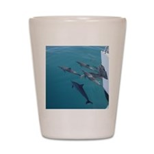 Dolphins Lead The Way Shot Glass