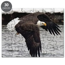 Eagle, Fish in Talons Puzzle