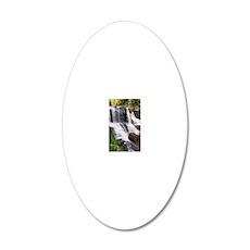 Blackwater Falls 20x12 Oval Wall Decal