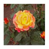 Tea Rose Tile Coaster