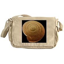Snail shell, SEM Messenger Bag