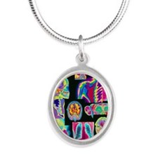 Assortment of coloured X-rays Silver Oval Necklace