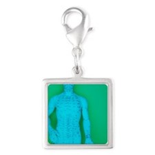 Acupuncture model Silver Square Charm