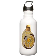 Illustration of a sect Water Bottle