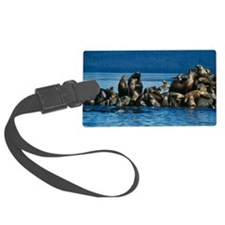 Steller's sea lions Luggage Tag