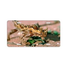 Thorny devil lizard Aluminum License Plate