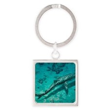 Tiger shark Square Keychain