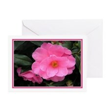 ...Camellia 02... Greeting Cards (Pk of 10)