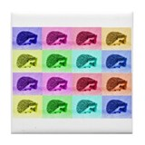 Hedgehog Hues Tile Coaster
