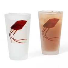 m5320763 Drinking Glass