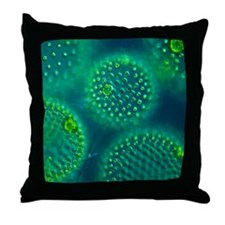 Volvox colonies Throw Pillow