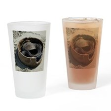 Black cobra coiled in basket on san Drinking Glass