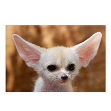 Fennec fox Postcards (Package of 8)