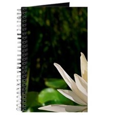 Water lily Journal