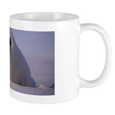 Harp seal ,Magdalen Islands ,Canada Mug