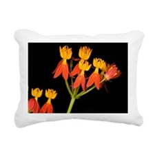 Butterfly Weed Rectangular Canvas Pillow