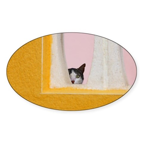 Curious cat against pink wall. Sticker (Oval)