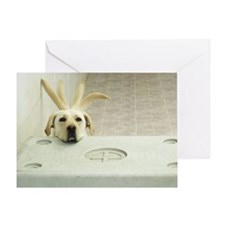Yellow lab resting head on crate wag Greeting Card
