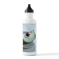 Healthy breakfast Water Bottle