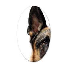 German shepherd dog with whi Wall Decal