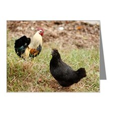 Rooster and hen Note Cards (Pk of 10)