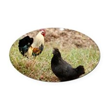Rooster and hen Oval Car Magnet