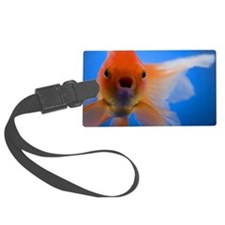 Close-up of a goldfish Luggage Tag