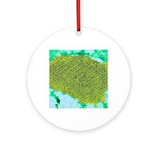 Human papilloma virus particles, TE Round Ornament
