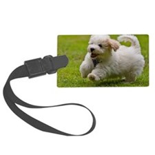 Havanese puppy Luggage Tag