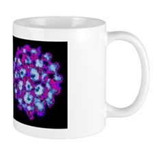 Human papilloma viruses Mug