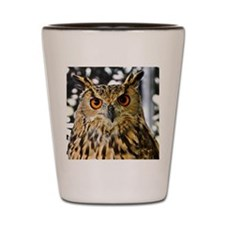 Owl with orange eyes Shot Glass