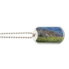 Alligat Dog Tags