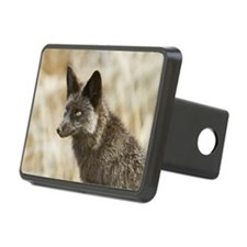 Red fox silver phase Hitch Cover