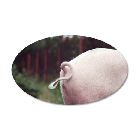 Pigs curly tail 35x21 Oval Wall Decal