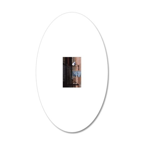 clothing hangs from clothes  20x12 Oval Wall Decal