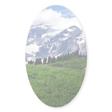Alpine wildflowers in full bloom le Decal