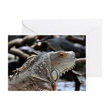 Close-Up Of Face Of Green Iguana Greeting Card