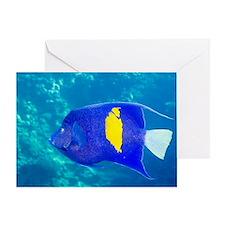 Yellowbar angelfish Greeting Card