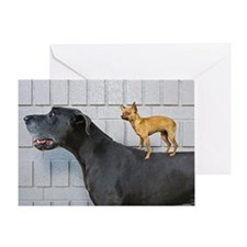 Chihuahua on Great Dane's back Greeting Card