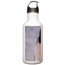 Siberian Husky Standin Water Bottle