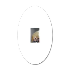 Brown Pelican in Santa Cruz  20x12 Oval Wall Decal
