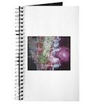 Cubic Galaxy Journal