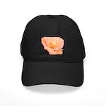 Peach Rose Black Cap